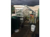 6ft x 8ft Glass Greenhouse