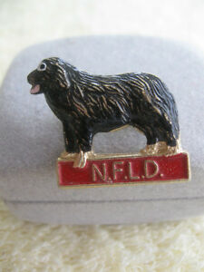 ATTRACTIVE NEWFOUNDLAND DOG PIN [stamped]