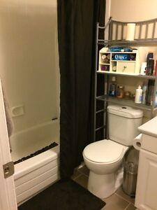 *ONE MONTH FREE* Spacious 2-Bedroom, Pet Friendly Apt. in Aylmer Gatineau Ottawa / Gatineau Area image 3