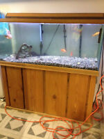 aquarium and stand