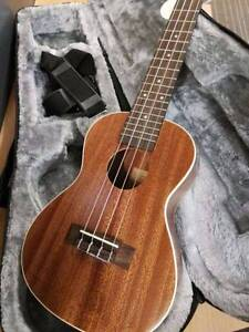 BRAND NEW CONCERT UKULELE WITH HARD CASE Balcatta Stirling Area Preview