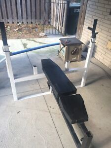 Home gym  Windsor Region Ontario image 1