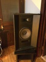 Traynor PA and JBL speakers