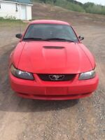 2002 mustang. Great shape