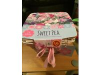 Sweet pea growing kit
