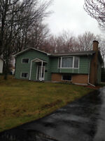4 Bedroom house in Riverview!