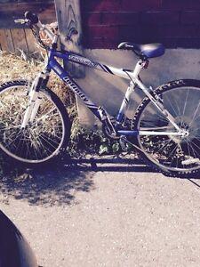 Infinity Telluride 21 Speed Bike