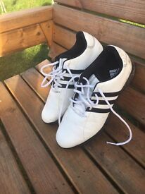 Adidas Golf Shoes (Size7)