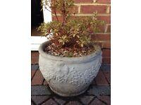 2 x Concrete Garden Pots