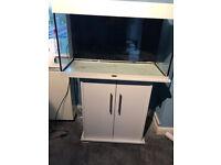 White Juwel rio 125 tropical/marine fish tank aquarium
