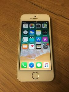Iphone 5s 16gb avec case