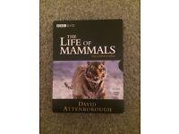David Attenborough life of mammals boxset