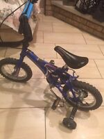 """Moonrider 14"""" bicycle for boys"""