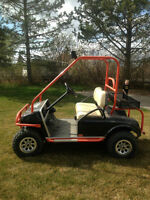 Excellent Lake Lot Electric Golf Cart