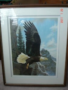 American Eagle Artist's Proof by Guy Coheleach