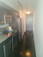 Fully furnished 1 Bed Condo - Windermere Ave and The Queensway