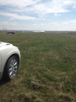 2 - 4.5 Acre Parcels to Build on. Easy Commute to Calgary!