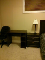 New One Bedroom Suite--Single occupancy, Non smoking