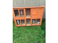 Large two storey rabbit hutch with rabbits