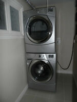 *** One Bedroom Basement Apartment For Rent***
