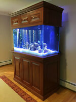 Custom Cherry Aquarium Stand & Canopy