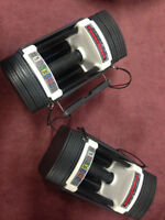 Powerblock Exercise Weights