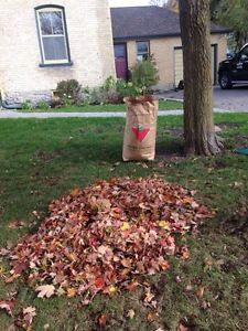 Fall Leaf Blowing And Removal Free Quotes!  Kawartha Lakes Peterborough Area image 1