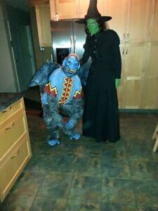 Flying Monkey and Wicked Witch Costumes