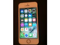 iPhone 5s in gold 02 network