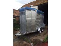 Horse box trailer