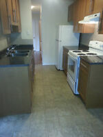 A Great 2 Bed Renovated Suite Near Whyte Ave & U of A