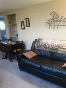 FULLY FURNISHED & EQUIPPED 1 BEDROOM APARTMENT NEAR WINDSOR Windsor Region Ontario image 1