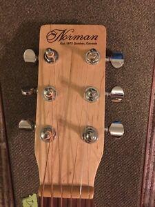 Norman Expedition Nat Parlour SG acoustic guitar  Peterborough Peterborough Area image 3
