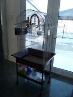 Belle cage avec 2 touis céleste
