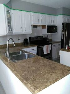 Laminate counter top/island and sink