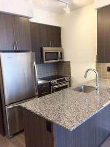 Rent 1 bdrm condo - York Mills/Don Mills - furnished option