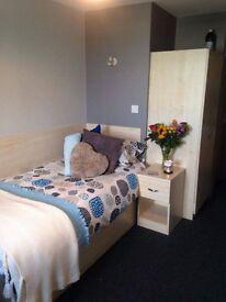 En-suite room to rent
