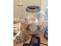 15L babybiOrb fish tank
