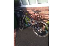 Carrera Banshee Full Suspension Mountain Bike