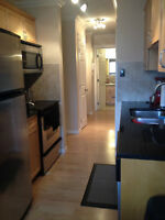 beautiful one bedroom close to UoA