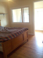 One Large Bedroom for Rent