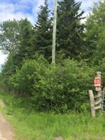 MUST SEE!  Beautiful wooded property!! Close to 7 acres!