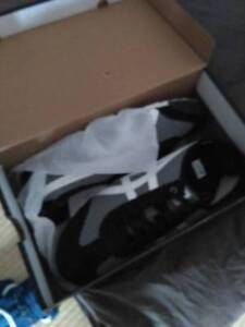 brand new onitsuka tiger mens 11 shoes Camperdown Inner Sydney Preview