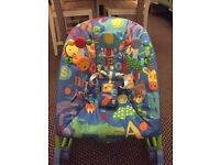 Fisher price Infant to Toddler rocker £12 ONO