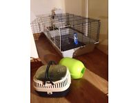Rabbit, ferret, rat cage with igloo, small pet carrier basket
