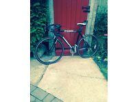 MuddyFox Road Bike