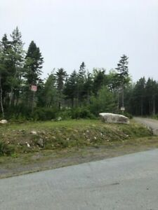 BUILD READY LOT - Williamswood