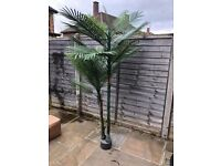Brand New artifical outdoor robellini double headed palm tree paid £150 selling for £100 ono