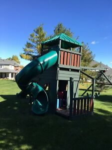 Deluxe kids climber for sale! Kitchener / Waterloo Kitchener Area image 1