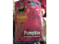 Ladies pumpkin costume